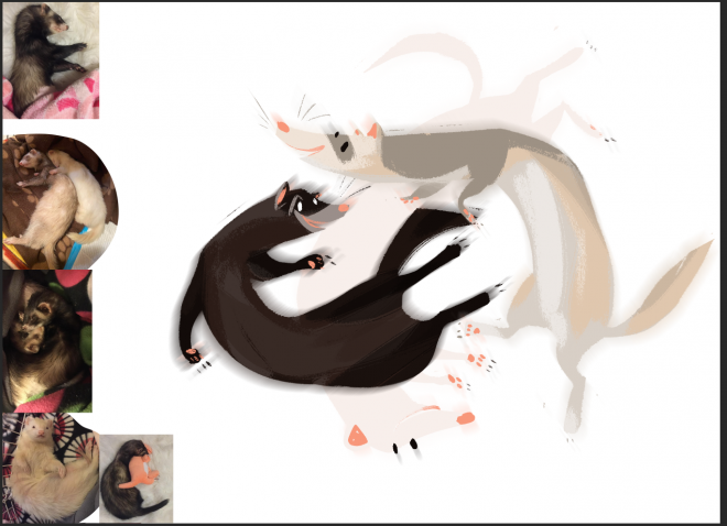 jennifer rose ferrets